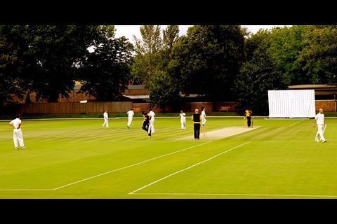 Cricket wide shot